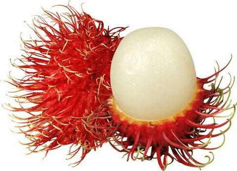 Rambutan - Malaysian Fruits